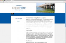 BridgePoint Analytics: 1-pg starter site