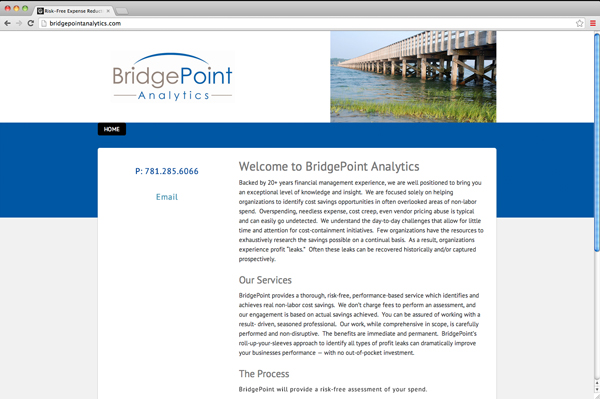 Bridgepoint Analytics, cost savings assessment